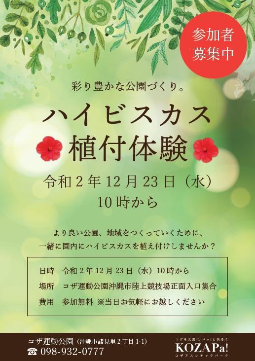 12/23(水)ハイビスカス植付体験