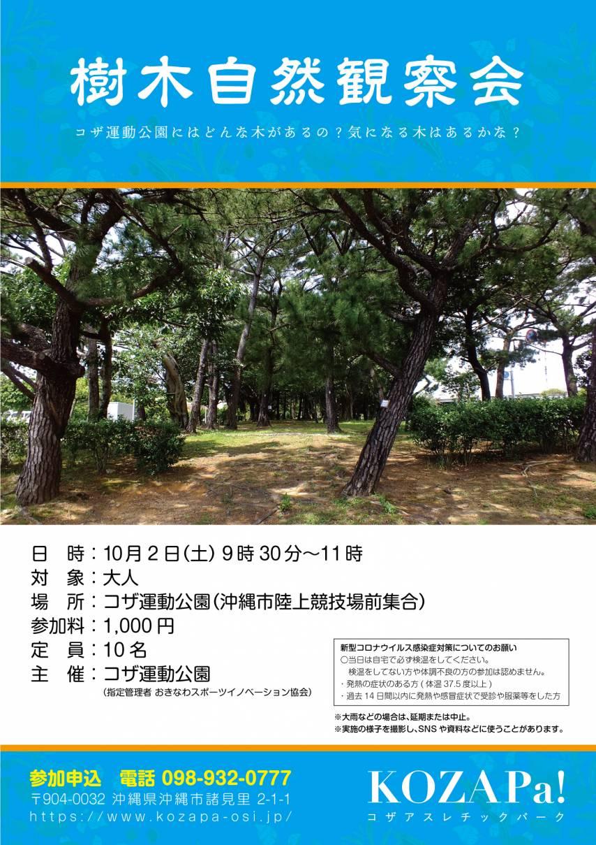 樹木自然観察会を開催!【終了いたしました】